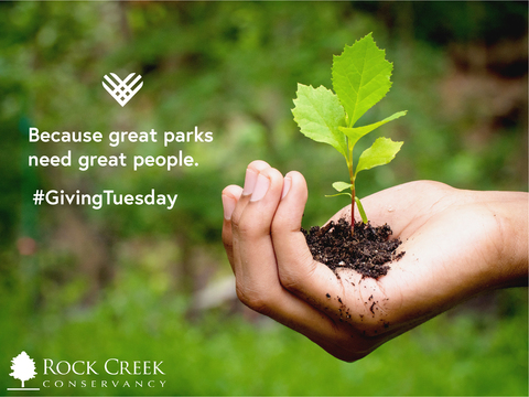 Restore Rock Creek On Giving Tuesday